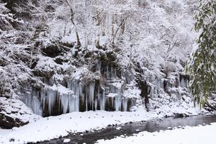 三十槌の氷柱の雪景色の写真素材 [FYI04734671]