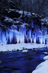 三十槌の氷柱のライトアップの写真素材 [FYI04734674]
