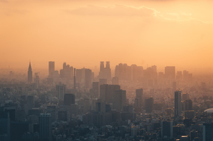 夕暮れの東京都心のビル群の写真素材 [FYI04734769]