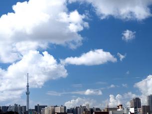 東京の夏空と雲の写真素材 [FYI04734830]