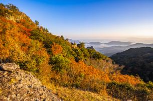 【香川県 小豆島】夕方の秋の寒霞渓の様子の写真素材 [FYI04734995]