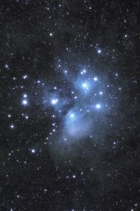 プレアデス星団の写真素材 [FYI04735053]