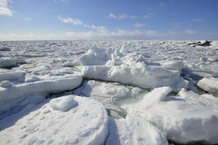知床の流氷(北海道・知床)の写真素材 [FYI04735199]