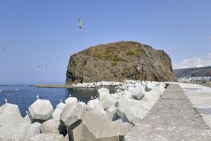 オロンコ岩の全景(北海道・知床)の写真素材 [FYI04735226]