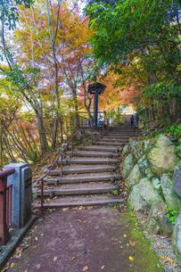 盛秋の秋川渓谷・石船橋の写真素材 [FYI04735247]