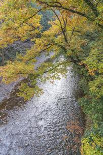 盛秋の秋川渓谷の写真素材 [FYI04735261]