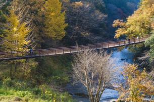 盛秋の秋川渓谷・石船橋の写真素材 [FYI04735282]