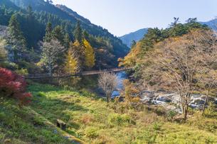盛秋の秋川渓谷・石船橋の写真素材 [FYI04735283]