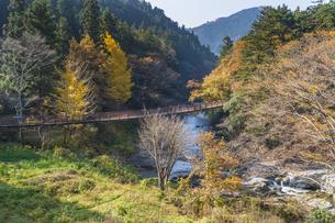 盛秋の秋川渓谷・石船橋の写真素材 [FYI04735284]