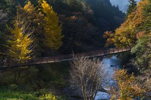 盛秋の秋川渓谷・石船橋の写真素材 [FYI04735288]
