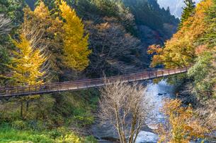 盛秋の秋川渓谷・石船橋の写真素材 [FYI04735289]