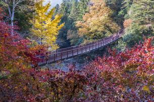 盛秋の秋川渓谷・石船橋の写真素材 [FYI04735292]