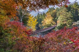 盛秋の秋川渓谷・石船橋の写真素材 [FYI04735294]