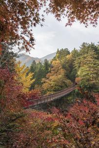 盛秋の秋川渓谷・石船橋の写真素材 [FYI04735297]