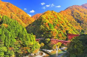 秋の黒部峡谷 トロッコ列車と紅葉の山並みの写真素材 [FYI04735321]