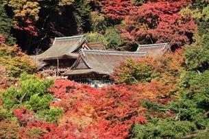 紅葉の談山神社の写真素材 [FYI04735352]
