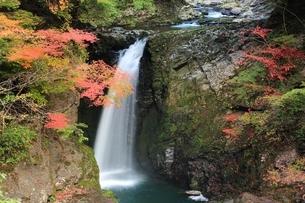 紅葉の高野大滝の写真素材 [FYI04735371]