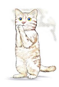 頼み猫のイラスト素材 [FYI04735686]