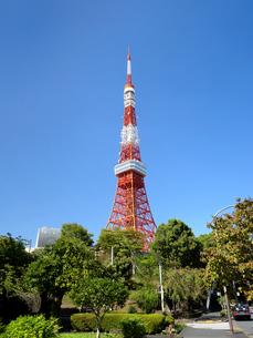 東京タワーの写真素材 [FYI04735948]