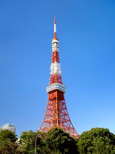 東京タワーの写真素材 [FYI04735949]