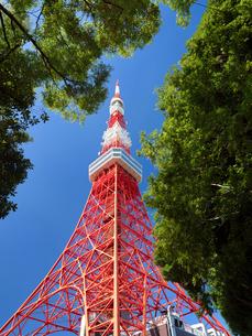 東京タワーの写真素材 [FYI04735951]