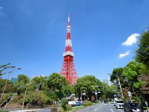 東京タワーの写真素材 [FYI04735953]