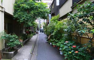 下町の裏通りの写真素材 [FYI04736134]