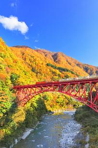 秋の黒部峡谷 トロッコ列車と紅葉の山並みの写真素材 [FYI04736141]