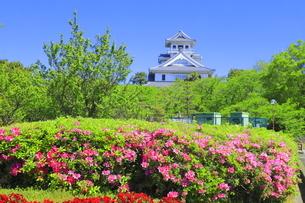 ツツジの咲く長浜城の写真素材 [FYI04736343]