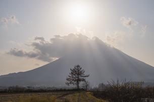 太陽が灯す羊蹄山の写真素材 [FYI04736408]