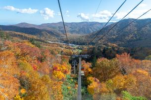 北海道秋の風景 札幌市の紅葉の写真素材 [FYI04736602]