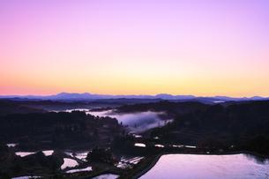 秋の星峠 朝焼け空と棚田に霧の写真素材 [FYI04736656]