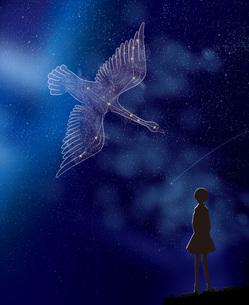 白鳥座と少女のイラスト素材 [FYI04736849]