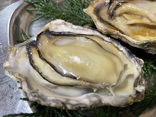 焼き牡蠣の写真素材 [FYI04736986]