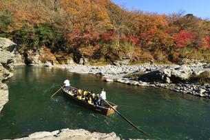 長瀞舟下り 紅葉の渓谷を和舟で舟下りの写真素材 [FYI04737208]