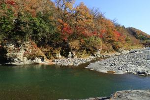 長瀞の岩畳 紅葉の荒川の写真素材 [FYI04737209]