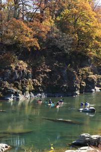 長瀞 カヌー 紅葉の渓谷でカヌーを楽しむの写真素材 [FYI04737215]