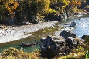 長瀞舟下り 紅葉の渓谷を和舟で舟下りの写真素材 [FYI04737303]