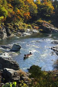 長瀞舟下り 紅葉の渓谷を和舟で舟下りの写真素材 [FYI04737307]