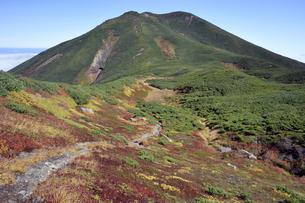 紅葉のサシルイ岳(北海道・知床)の写真素材 [FYI04737379]