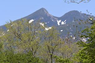新緑と硫黄山(北海道・知床)の写真素材 [FYI04737397]