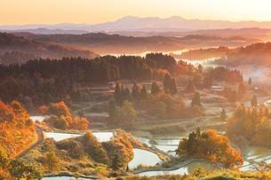朝焼けの星峠の棚田と紅葉の写真素材 [FYI04737550]