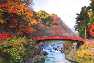 世界文化遺産 日光二荒山神社の神橋の写真素材 [FYI04737551]