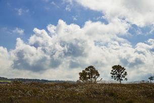 朝霧高原の流れる雲の写真素材 [FYI04737686]