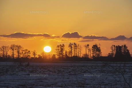 厳冬の日の出の写真素材 [FYI04737691]