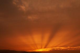 差し込む夕陽の写真素材 [FYI04738090]