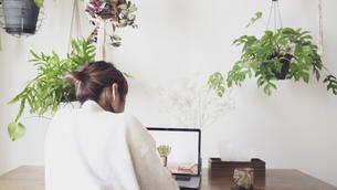 自宅オフィスで仕事する日本人女性の後ろ姿の写真素材 [FYI04738303]