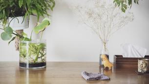 ダイニングテーブルに置かれた布巾の写真素材 [FYI04738304]