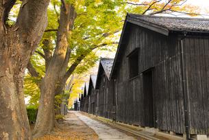 山居倉庫の秋の写真素材 [FYI04738397]