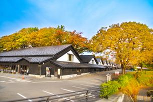 山居倉庫の秋の写真素材 [FYI04738440]